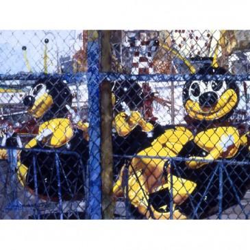 Coney Island Bugs